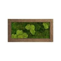 Картина из стабилизированного мха rock 30% ball- and 70% flat moss l100 w50 h5 см