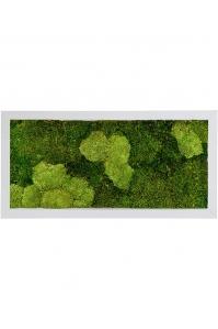 Картина из стабилизированного мха superline 30% ball- and 70% flat moss l100 w50 h5 см