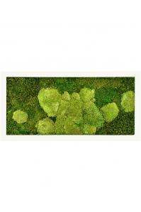 Картина из стабилизированного мха stiel ral 9010 mat 50% ball- and 50% flat moss l100 w50 h5 см