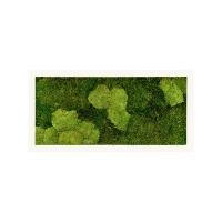 Картина из стабилизированного мха stiel ral 9010 mat 30% ball- and 70% flat moss l100 w50 h5 см