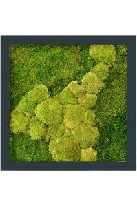 Картина из стабилизированного мха stiel ral 7016 mat 50% ball- and 50% flat moss l70 w70 h5 см