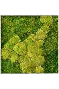 Картина из стабилизированного мха superline l 50% ball- and 50% flat moss l70 w70 h5 см