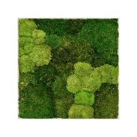 Картина из стабилизированного мха superline l 30% ball- and 70% flat moss l70 w70 h5 см