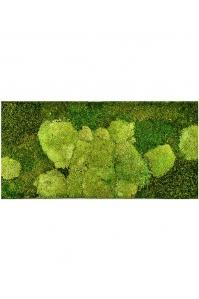 Картина из стабилизированного мха stiel l ral 9010 50% ball- and 50% flat moss l100 w50 h5 см