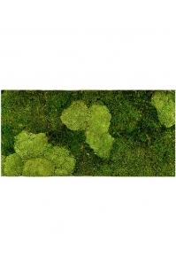 Картина из стабилизированного мха stiel l ral 9010 30% ball- and 70% flat moss l100 w50 h5 см