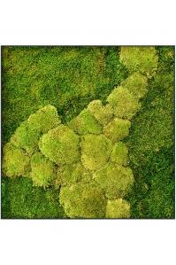 Картина из стабилизированного мха stiel l ral 7016 50% ball- and 50% flat moss l70 w70 h5 см
