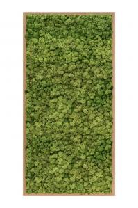 Картина из стабилизированного мха bamboo 100% reindeer moss (forest green) l60 w120 h6 см