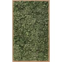 Картина из стабилизированного мха bamboo 100% reindeer moss (dark green) l60 w100 h6 см