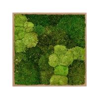 Картина из стабилизированного мха bamboo 30% ball moss (natural) and 70% flat moss l80 w80 h6 см