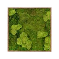 Картина из стабилизированного мха meranti 30% ball moss (natural) and 70% flat moss l100 w100 h6 см