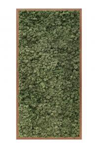 Картина из стабилизированного мха meranti 100% reindeer moss (dark green) l60 w120 h6 см