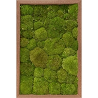 Картина из стабилизированного мха meranti 100% ball moss (natural) l40 w60 h6 см