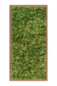 Картина из стабилизированного мха meranti 100% reindeer moss (forest green) l40 w80 h6 см