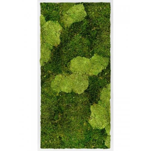 Картина из стабилизированного мха mdf ral 9010 satin gloss 30% ball moss (natural) and 70% flat moss l60 w120 h6 см