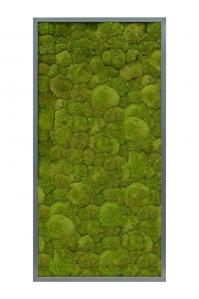 Картина из стабилизированного мха mdf ral 7016 satin gloss 100% ball moss (natural) l60 w120 h6 см