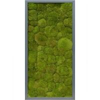 Картина из стабилизированного мха mdf ral 7016 satin gloss 100% ball moss (natural) l40 w80 h6 см