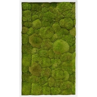 Картина из стабилизированного мха mdf ral 9010 satin gloss 100% ball moss (natural) l60 w100 h6 см