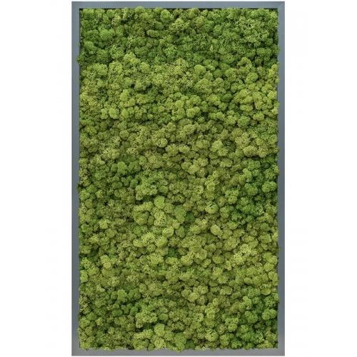Картина из стабилизированного мха mdf ral 7016 satin gloss 100% reindeer moss (forest green) l60 w100 h6 см