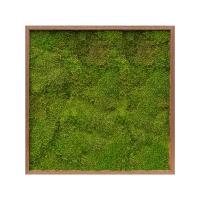 Картина из стабилизированного мха meranti 100% flat moss l80 w80 h6 см