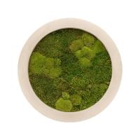 Картина из стабилизированного мха natural 30% ball- and 70% flat moss d40 h5 см