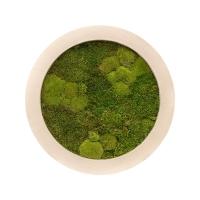 Картина из стабилизированного мха natural 30% ball- and 70% flat moss d80 h5 см