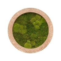 Картина из стабилизированного мха rock 30% ball- and 70% flat moss d80 h5 см