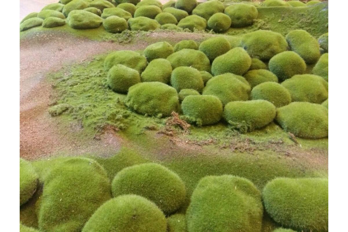 Мох искусственный камушки полотно 100*100 см