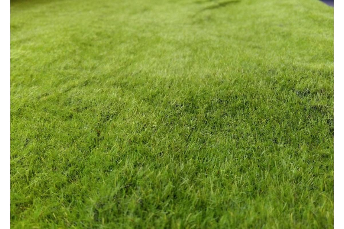 Мох рулонный искусственный ковровый 1 м2 - Фото 2