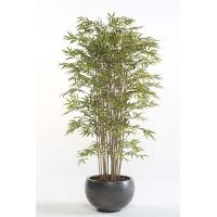Бамбук искусственный многоствольный 21 ствол 180 см