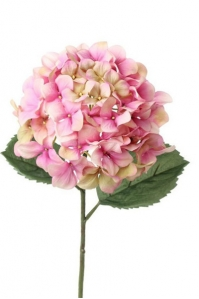 """Гортензия """"Imperial"""" искусственная розово-зеленая 68 см"""