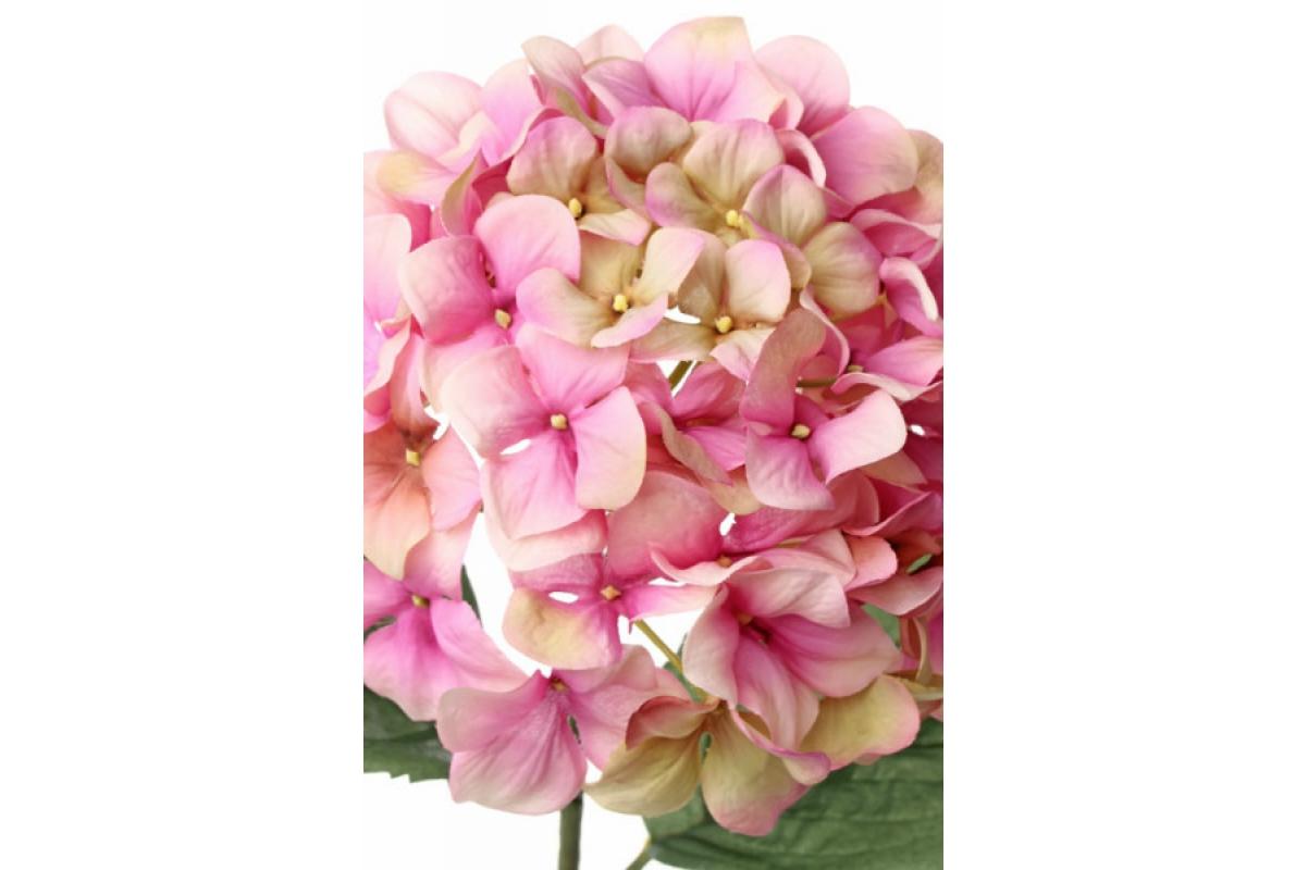 """Гортензия """"Imperial"""" искусственная розово-зеленая 68 см - Фото 2"""