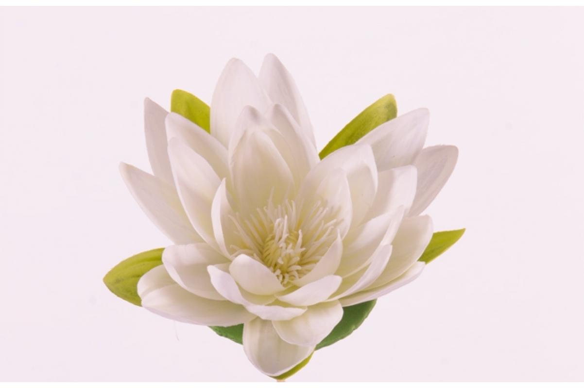 Цветок Лотоса (кувшинка) искусственный кремовый 16 см