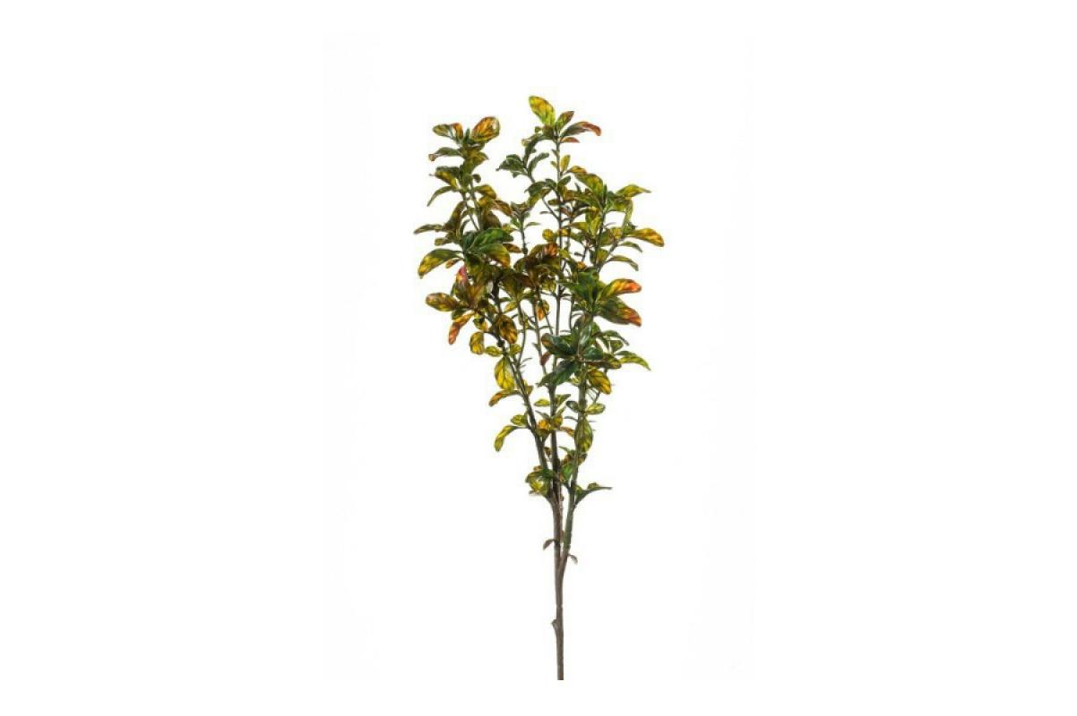 Ветка Фиттоспорума искусственная зеленая 70 см