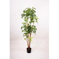 Гинкго искусственное зеленое 160 см