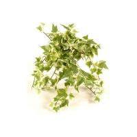 Плющ (хедера) искусственный зелено-белый 30 см