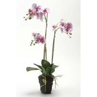 Орхидея Фаленопсис искусственная сиреневая с корнями и листьями в торфе 75 см (Real Touch)