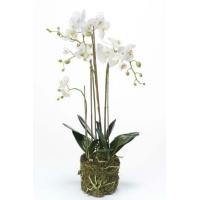 Орхидея Фаленопсис искусственная белая с корнями и листьями в торфе 130 см (Real Touch)
