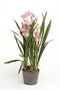 Орхидея Цимбидиум в торфе искусственная  розовая 75 см (Real Touch)