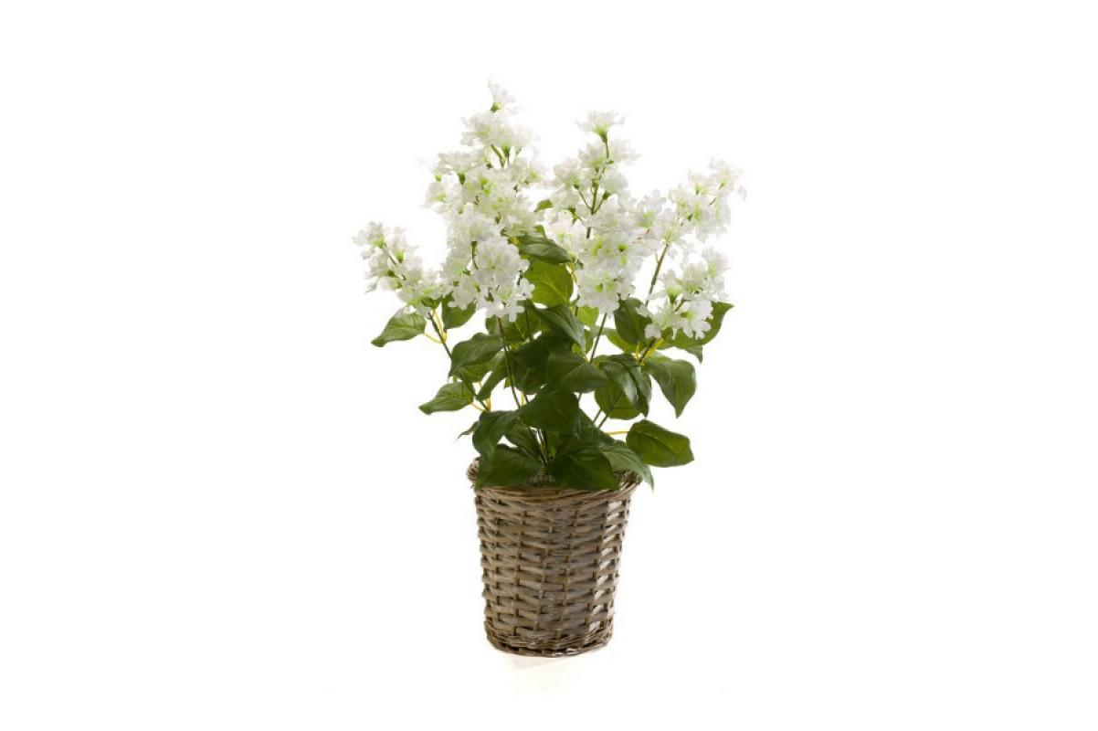 Сирень искусственная куст белая 45 см (без кашпо) - Фото 2
