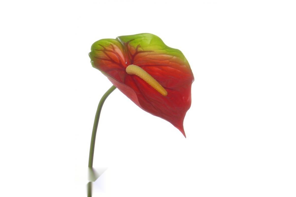 Антуриум Де Люкс искусственный красно-зеленый 78 см (Real Touch)