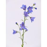 Колокольчик искусственный голубой 66 см