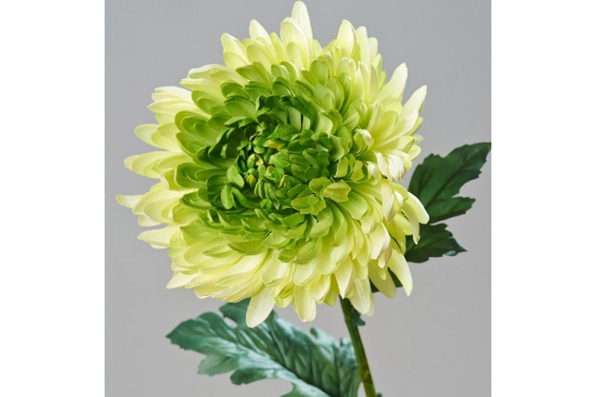 Хризантема Королевская искусственная зеленая 75 см - Фото 2