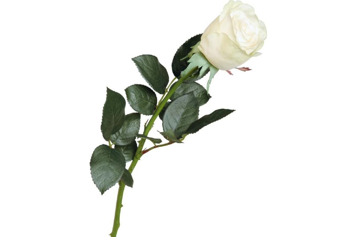 Роза Джессика полуоткрытая искусственная зелено-белая 72 см (Real Touch)