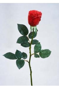 Роза Джессика полуоткрытая искусственная красная 72 см (Real Touch)