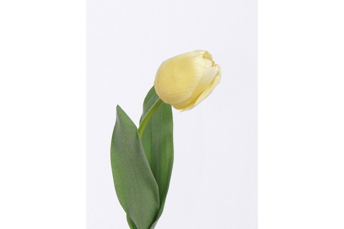 """Тюльпан Королевский """"Royal"""" искусственный светло-желтый 48 см (Real Touch)"""