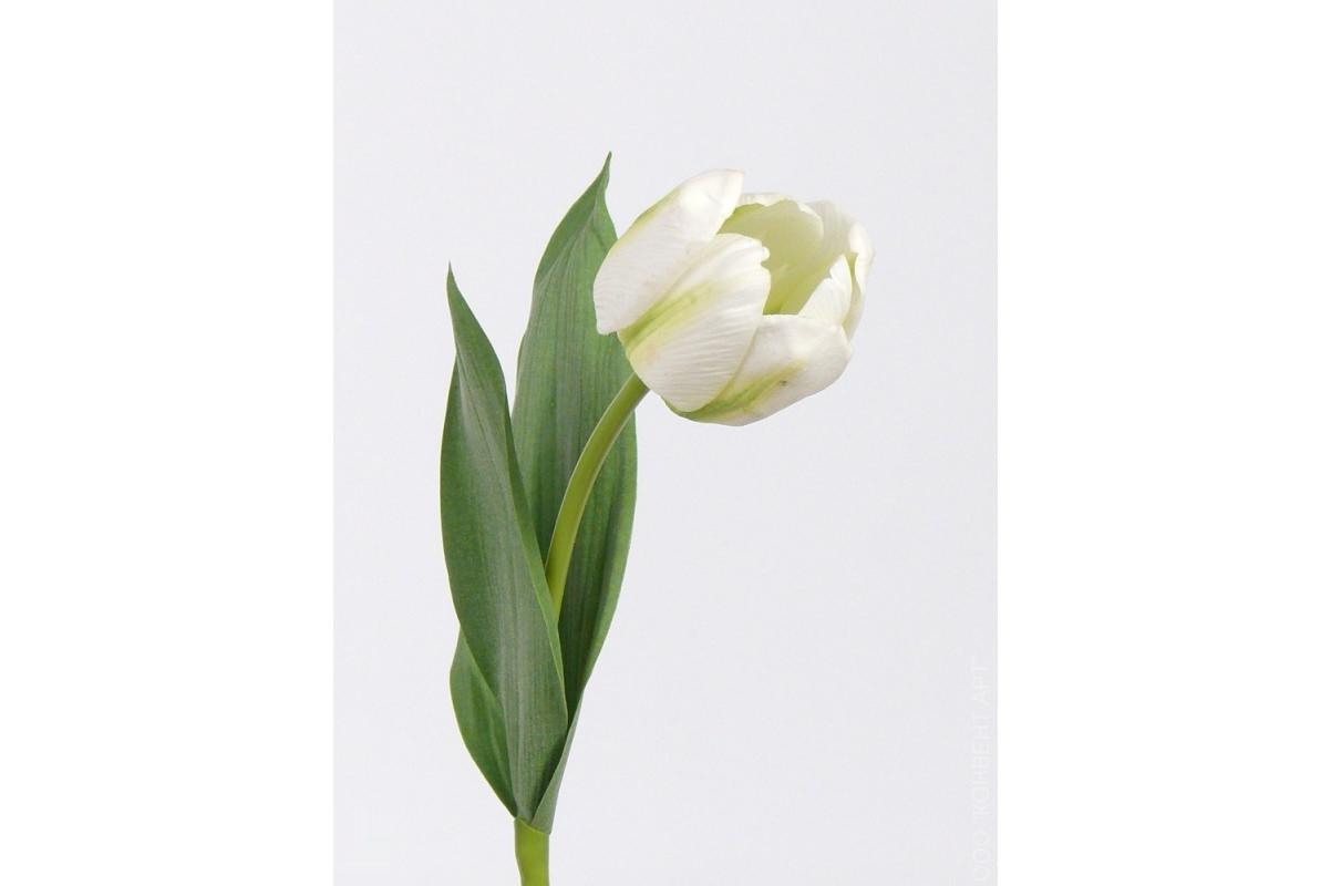 """Тюльпан Королевский """"Royal"""" искусственный белый 48 см (Real Touch)"""