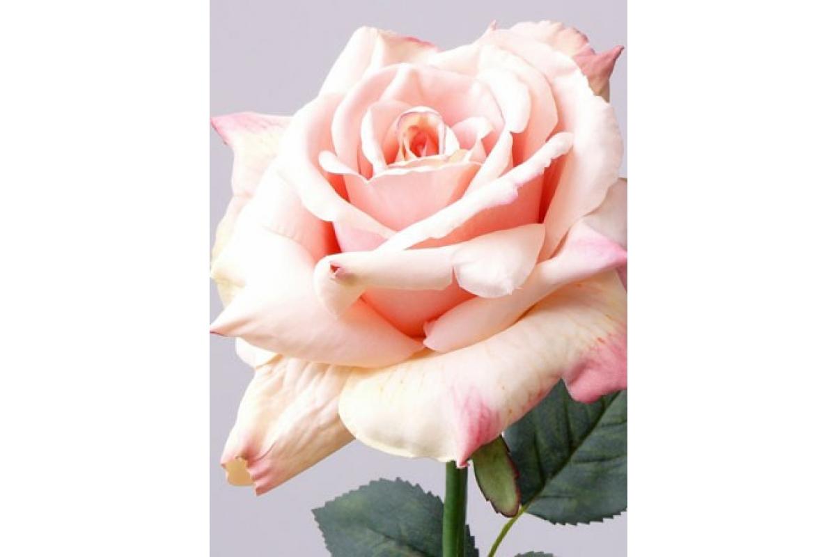 Роза Королевская искусственная розовая 67 см - Фото 2