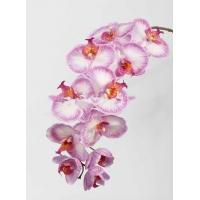 """Орхидея Фаленопсис """"Jumbo"""" искусственная бело-розовая 102 см (Real Touch)"""