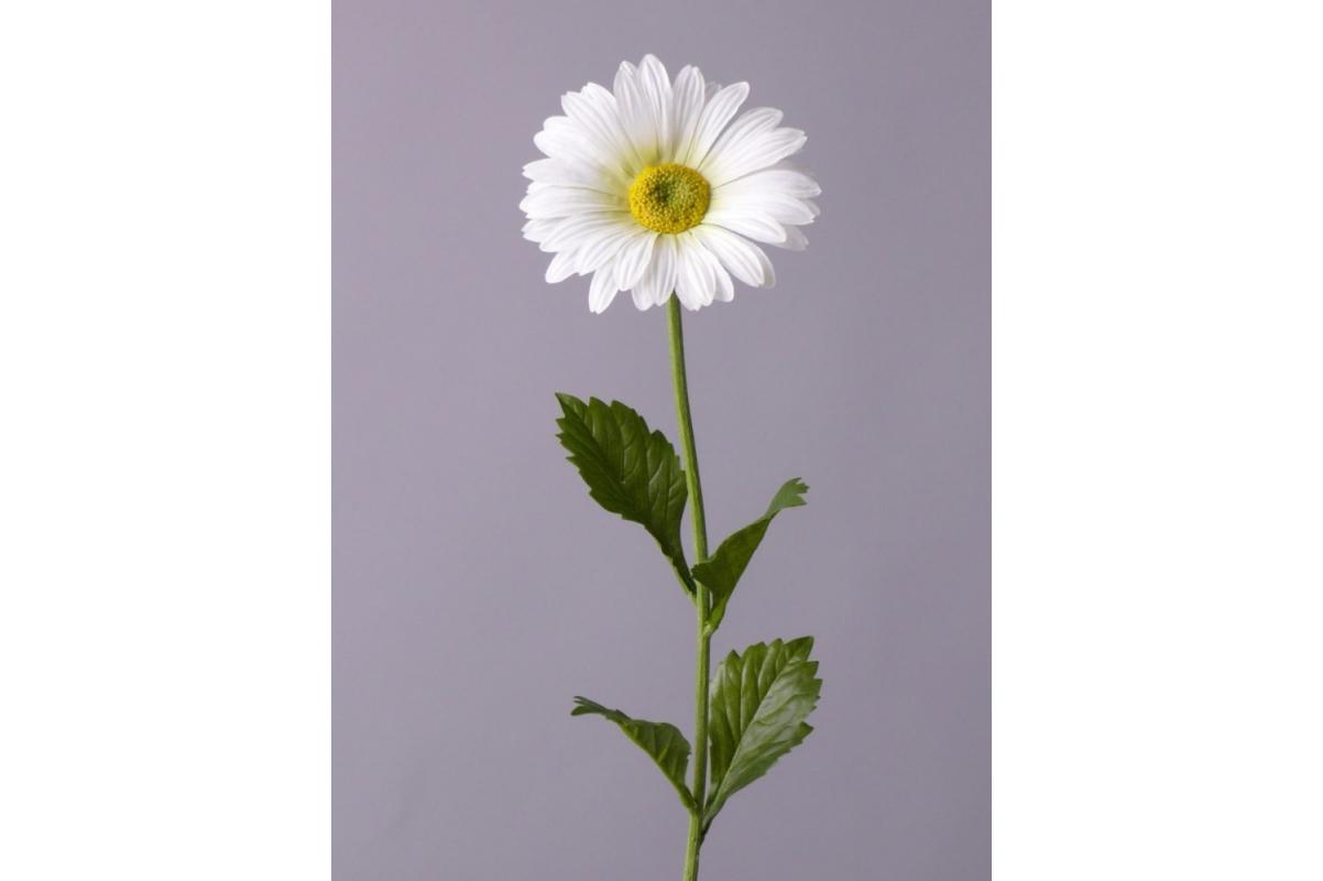 Ромашка садовая искусственная белая 70 см - Фото 2
