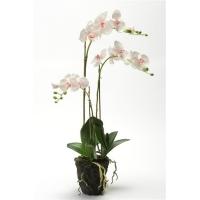 Искусственная Орхидея Фаленопсис c корнями и листьями в торфе бело-сиреневая 75 см